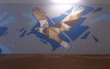 arnhem-16-10-2013-eagle-unknown